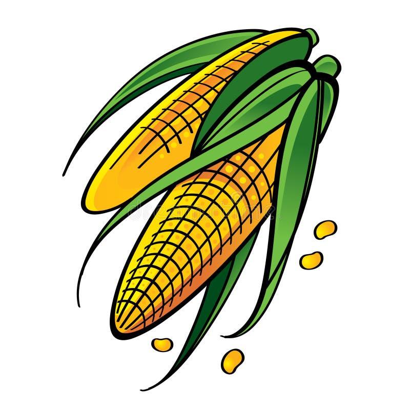 新鲜的玉米 库存例证