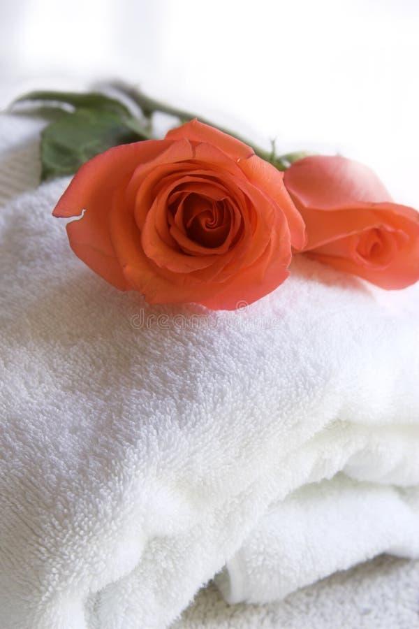 新鲜的玫瑰毛巾 免版税库存照片