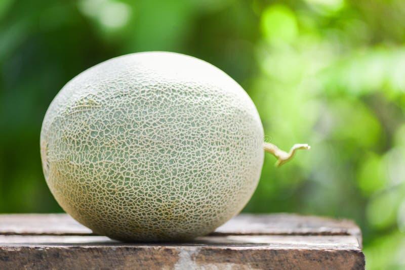 新鲜的瓜或绿色瓜甜瓜在木桌和自然上 免版税库存图片