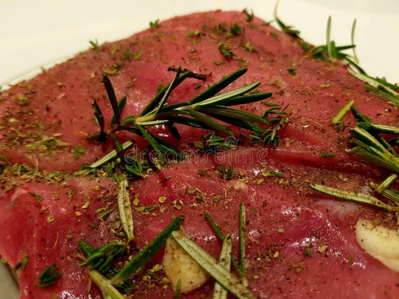 新鲜的生肉的不同的类型 库存照片