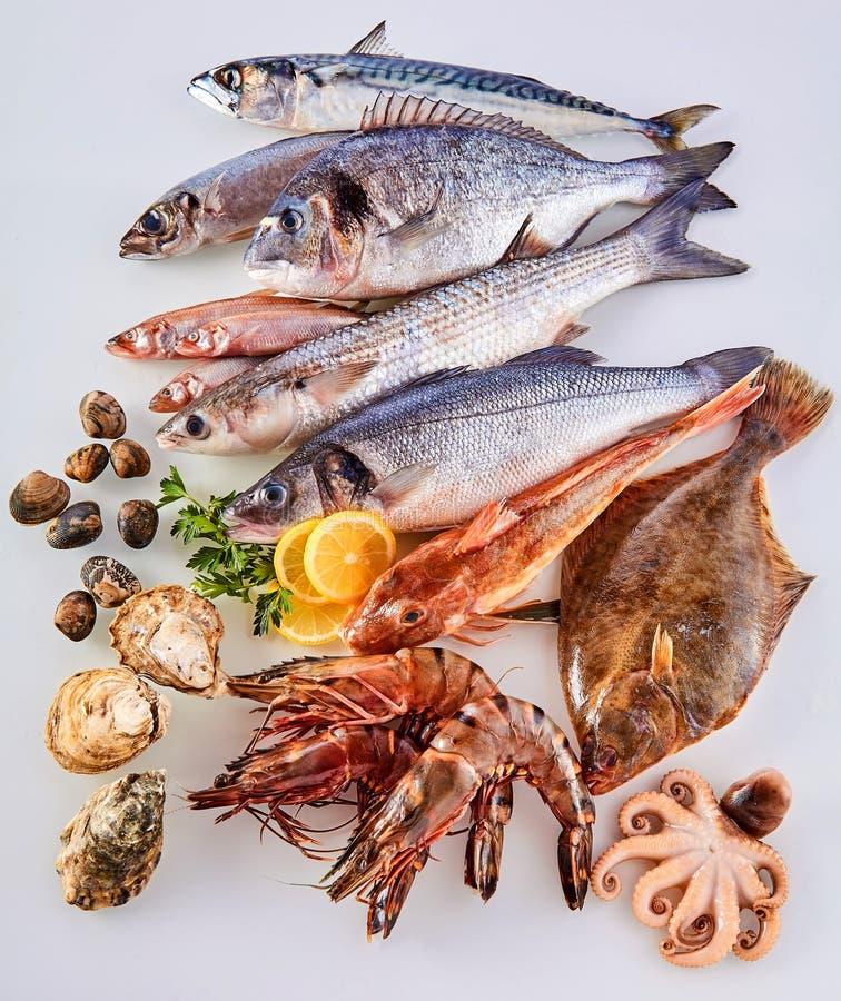 新鲜的生鱼、贝类和海鲜在白色 库存照片