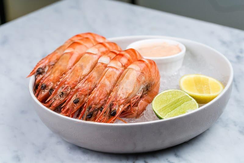 新鲜的皇家大虾用柠檬和调味汁 免版税库存图片