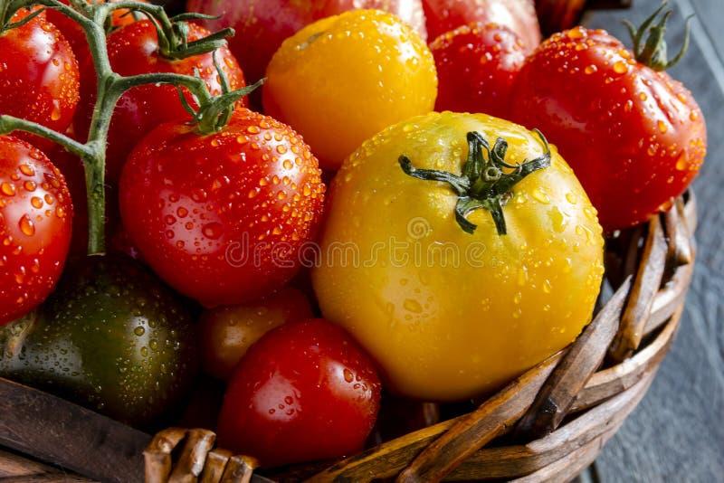 新鲜的祖传遗物蕃茄的分类 库存照片