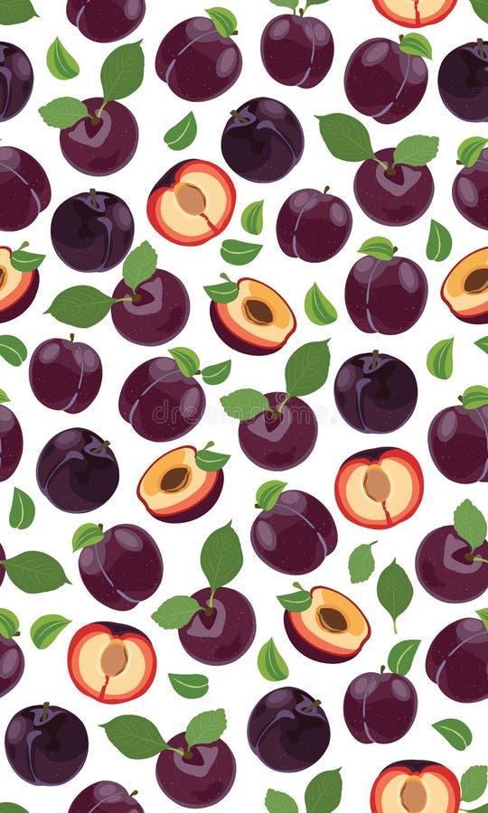 新鲜的紫色李子无缝的样式,切片,坑,叶子,核心 设置果子 r 向量例证