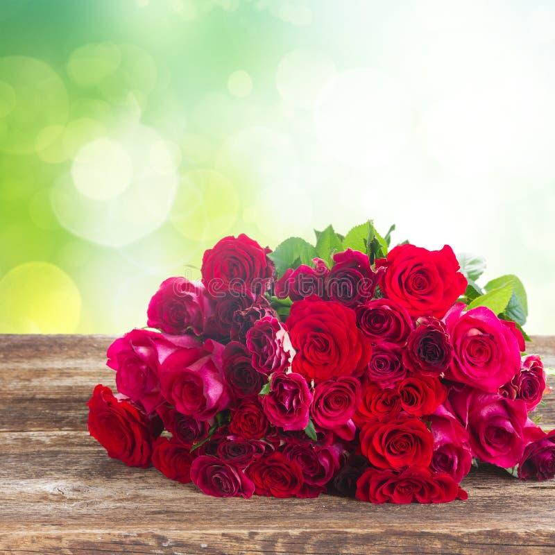 新鲜的红色玫瑰 库存图片