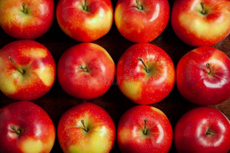 新鲜的红色苹果定货  图库摄影