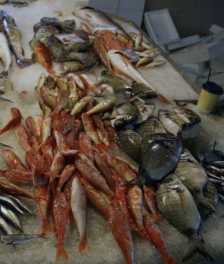 新鲜的红色鱼在干尼亚州上市场  免版税库存图片