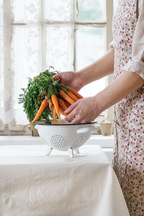 新鲜的红萝卜在女性手上 库存图片