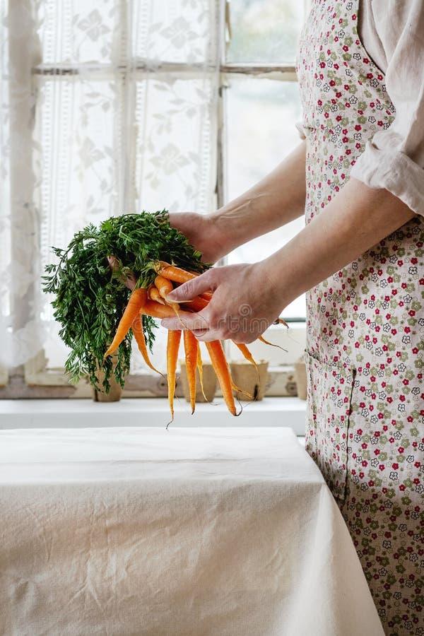 新鲜的红萝卜在女性手上 免版税库存照片