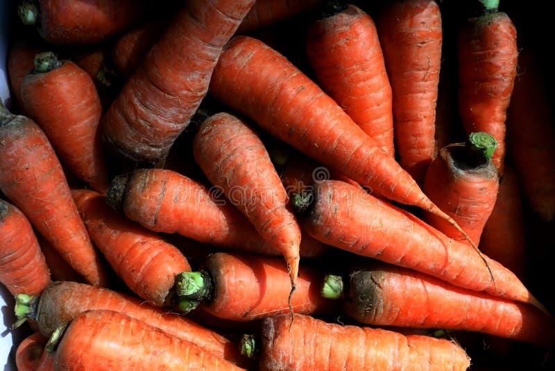 新鲜的红萝卜在市场上 免版税库存图片