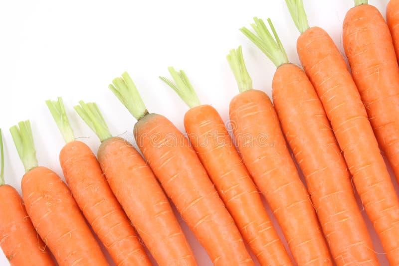新鲜的红萝卜 图库摄影