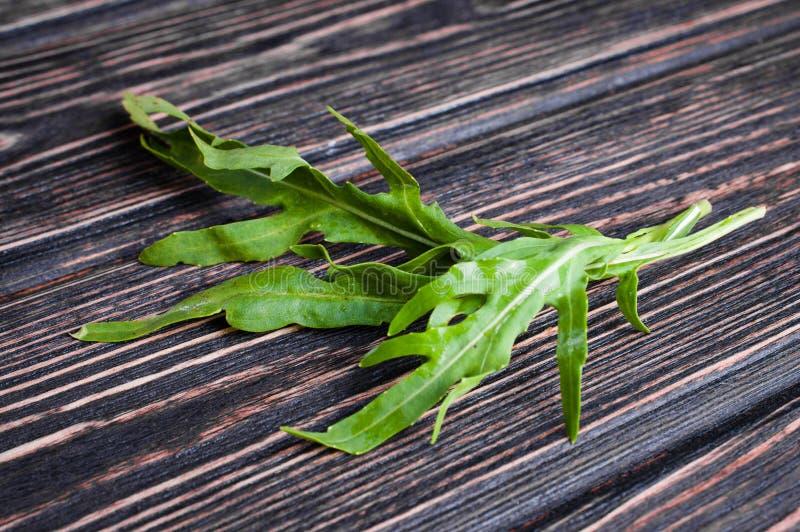 新鲜的绿色芝麻菜 库存照片