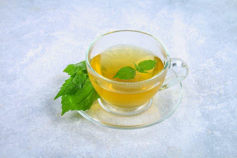 新鲜的绿色荨麻和一个清楚的玻璃杯子叶子在一张灰色具体桌上的草本荨麻茶 免版税库存图片