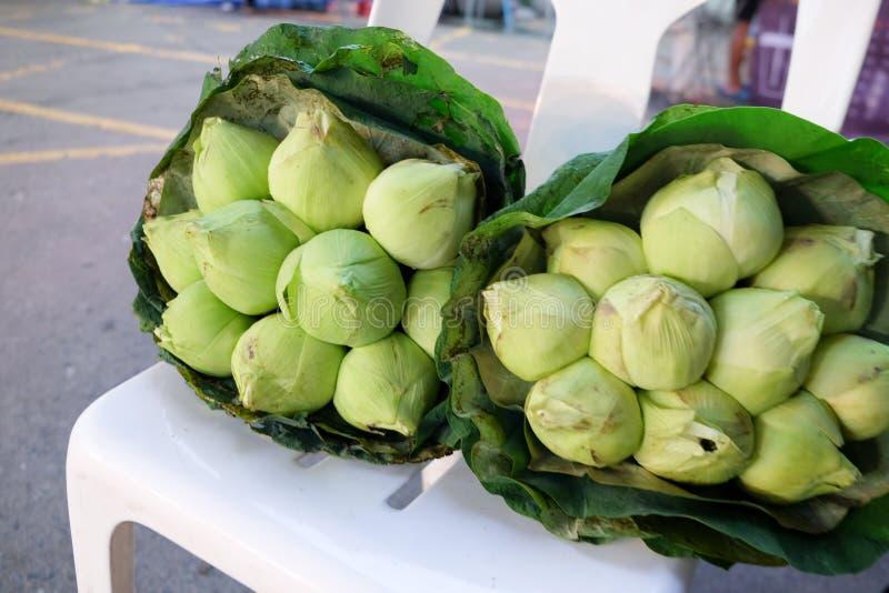 新鲜的绿色莲花花束发芽在花市场上 免版税库存照片