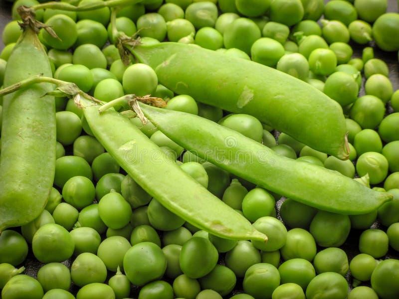 新鲜的绿色被剥皮的豌豆Pisum Sativum和在荚的绿豆特写镜头在一张木桌上 免版税库存图片