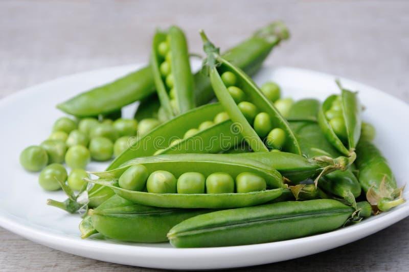 新鲜的绿豆荚 库存照片