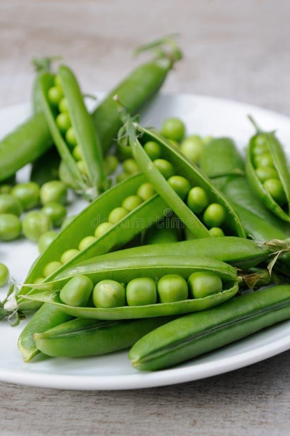 新鲜的绿豆荚 免版税库存照片
