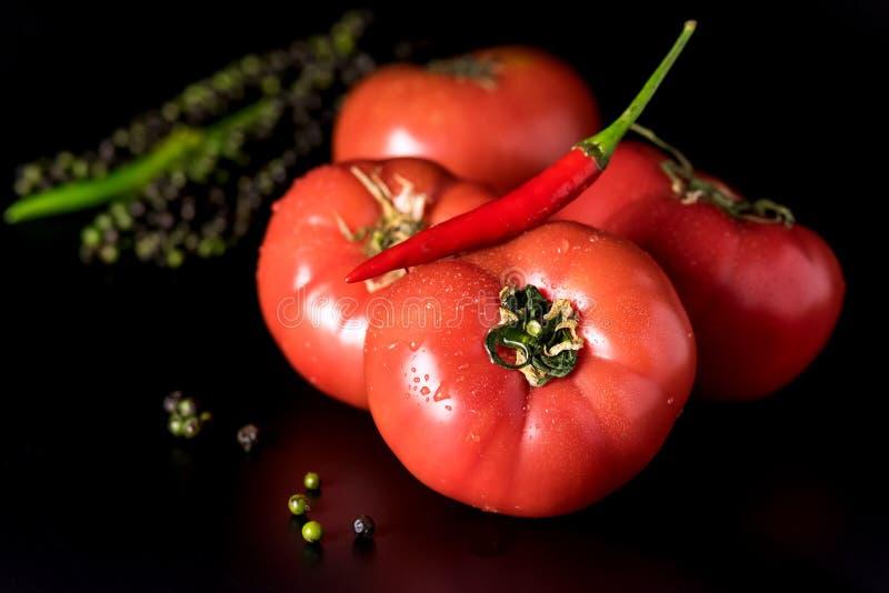 新鲜的美丽的红色蕃茄和辣椒和青椒在黑背景正方形 免版税库存照片