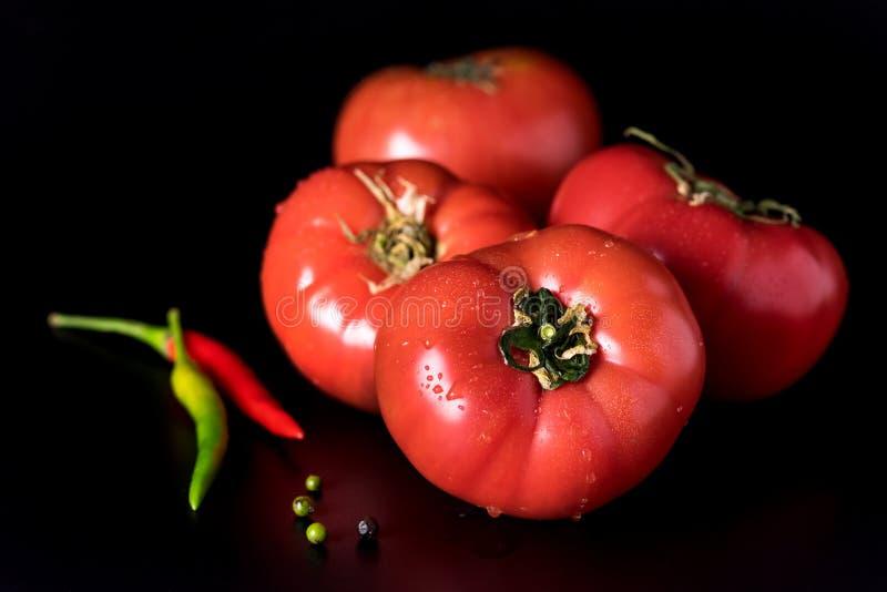 新鲜的美丽的红色蕃茄和辣椒和青椒在黑背景正方形 免版税图库摄影