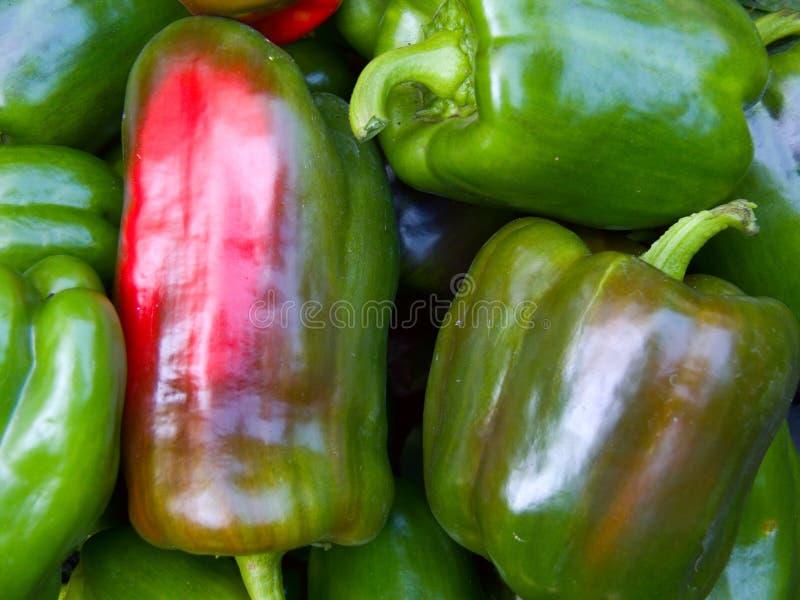 新鲜的胡椒蔬菜 免版税库存照片
