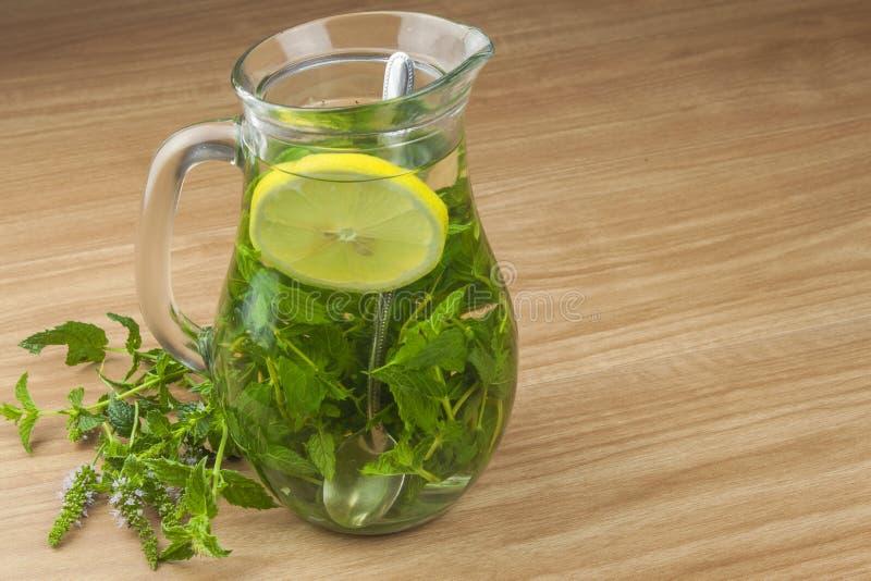 新鲜的自创薄荷的茶 吸引的夏天茶点 没有糖的健康,刷新的饮料 库存图片