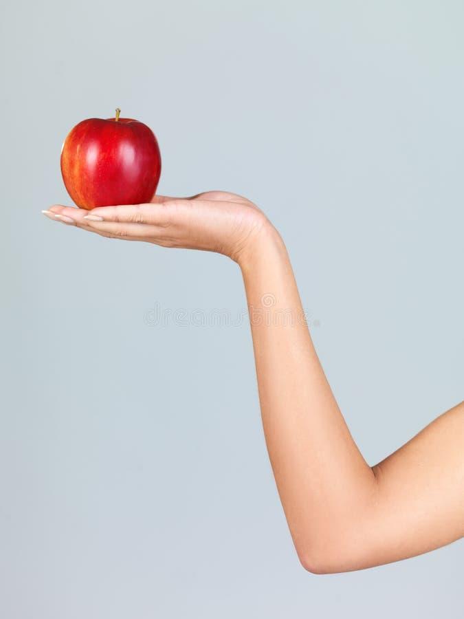 新鲜的苹果 库存图片