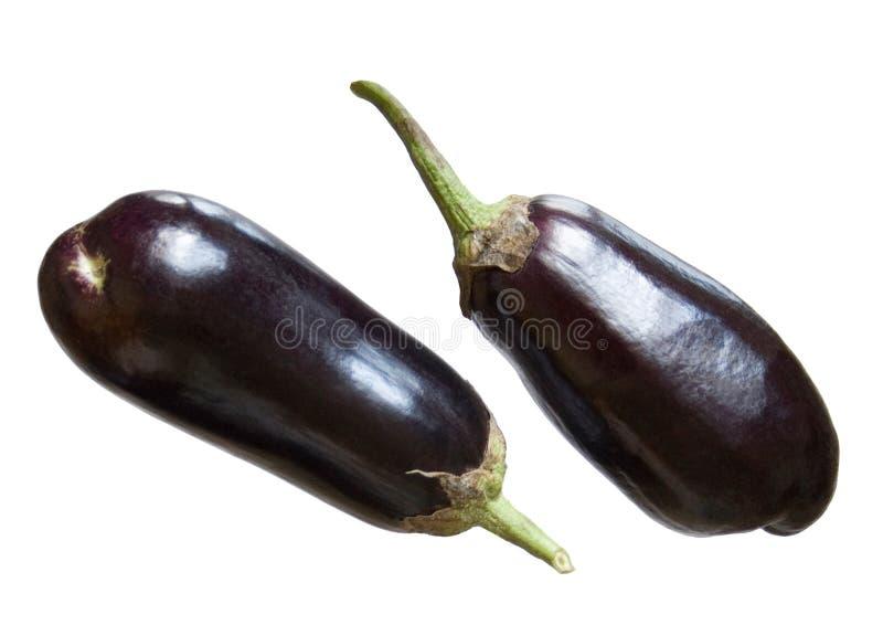 新鲜的茄子 库存照片