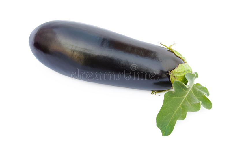 新鲜的茄子 库存图片