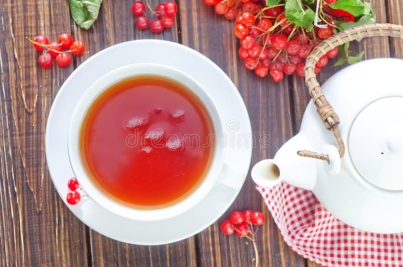 新鲜的茶 库存照片