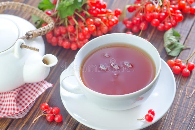 新鲜的茶 免版税图库摄影