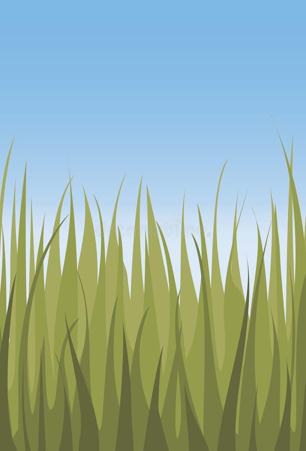 新鲜的草天空 库存照片