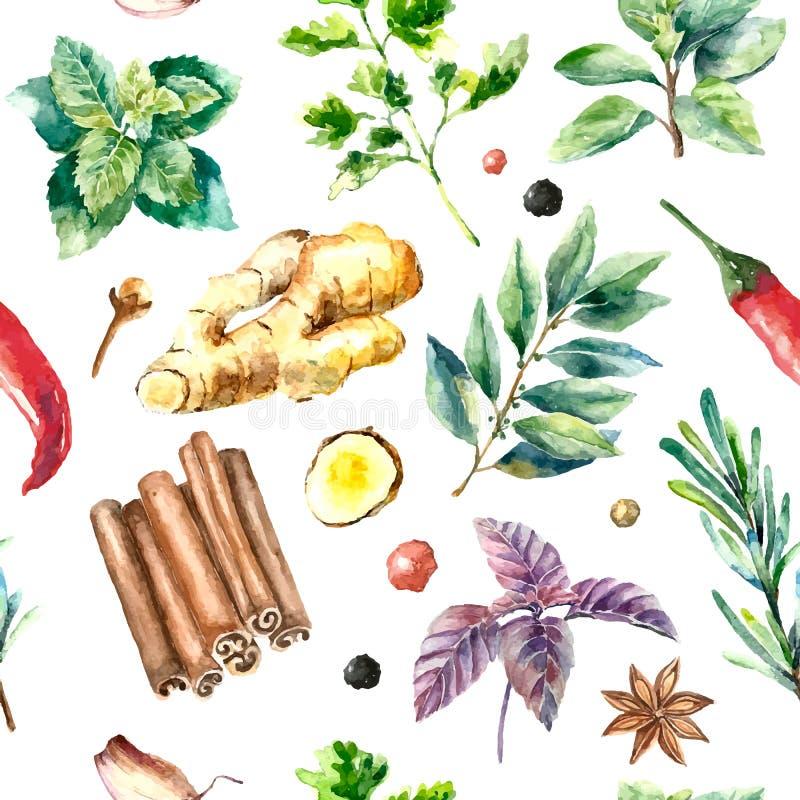 新鲜的草本和香料的水彩无缝的样式 库存例证
