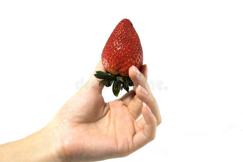 新鲜的草莓用妇女手在背景中 免版税库存图片
