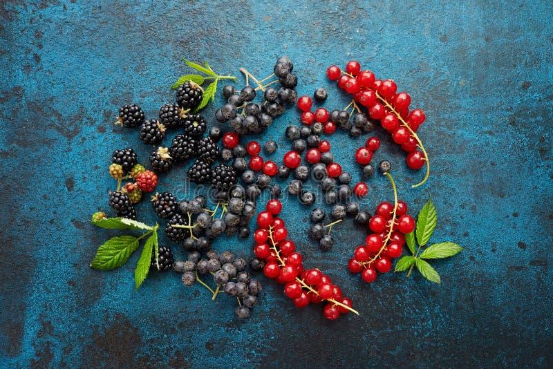 新鲜的莓果的混合与叶子的在织地不很细金属背景 图库摄影