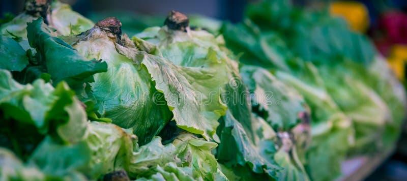 新鲜的莴苣在市场上 库存照片