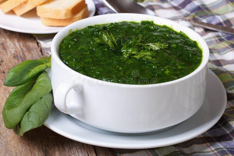 新鲜的菠菜汤用油煎方型小面包片在桌上关闭  免版税图库摄影