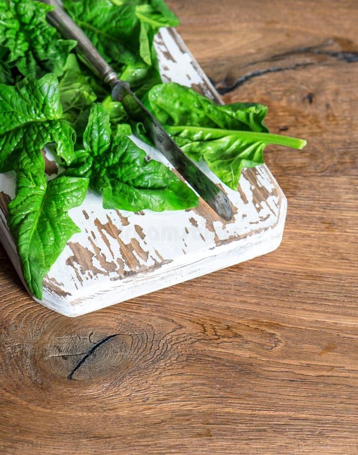 新鲜的菠菜留下健康有机食品 库存图片