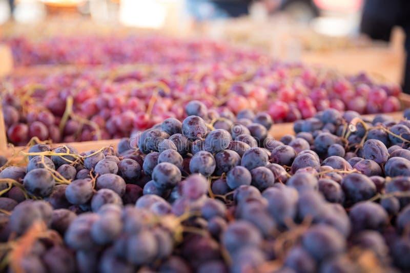 新鲜的葡萄照片在第比利斯义卖市场的图表和网络设计的,网站或流动应用程序的 免版税图库摄影