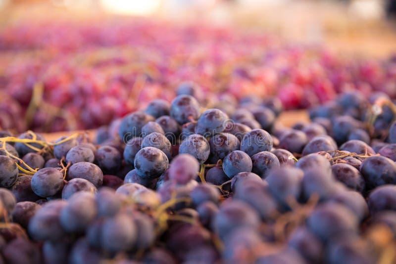 新鲜的葡萄照片在第比利斯义卖市场的图表和网络设计的,网站或流动应用程序的 图库摄影