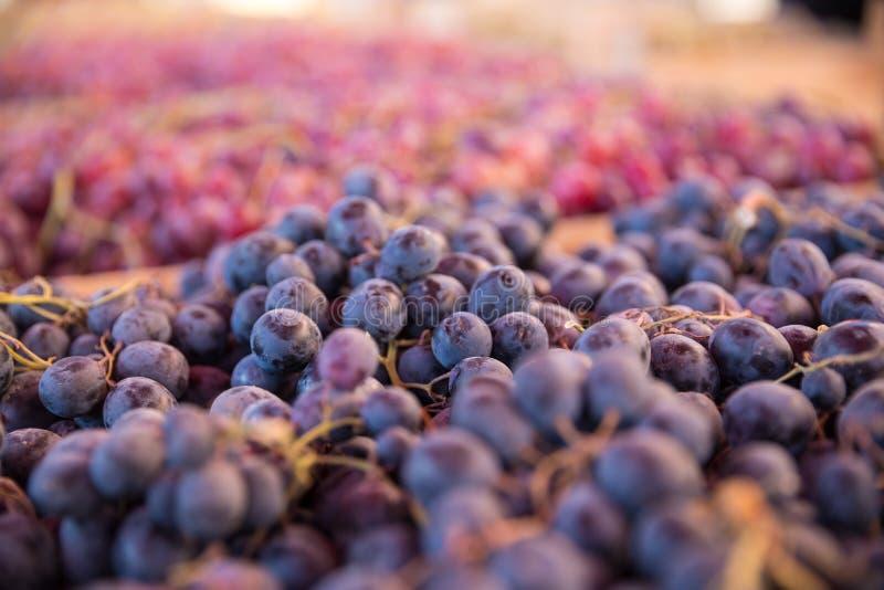 新鲜的葡萄照片在第比利斯义卖市场的图表和网络设计的,网站或流动应用程序的 库存照片