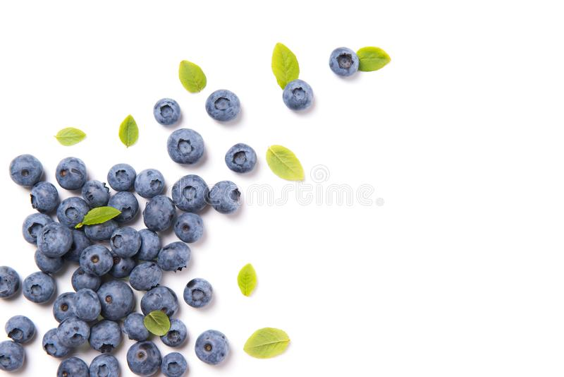 新鲜的蓝莓和叶子,在白色背景隔绝的莓果框架,顶视图 库存图片