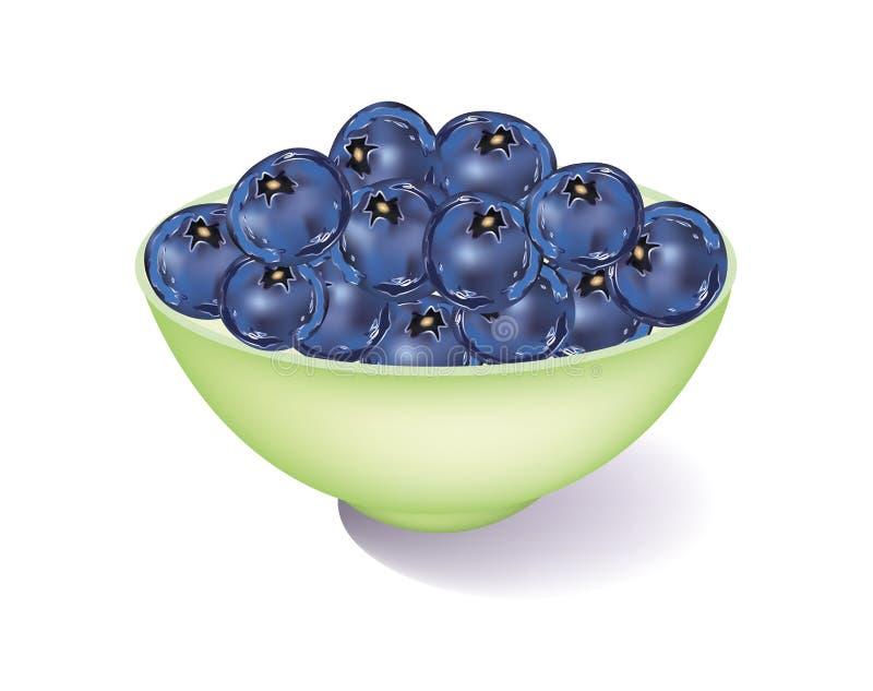 新鲜的蓝莓 向量例证