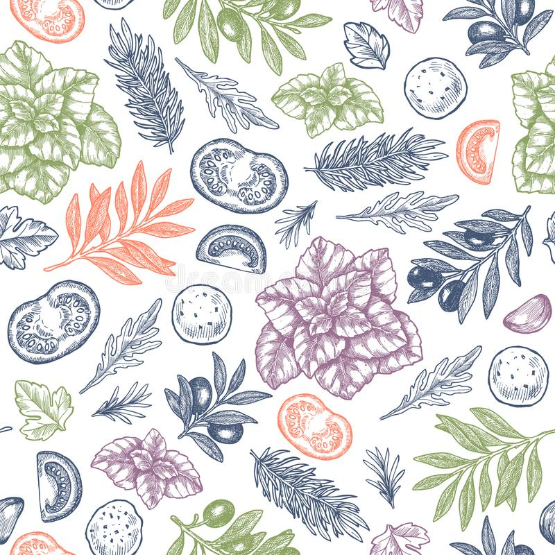 新鲜的蓬蒿, mozarella,蕃茄,橄榄,大蒜无缝的样式 被刻记的框架例证 意大利语的成份 皇族释放例证