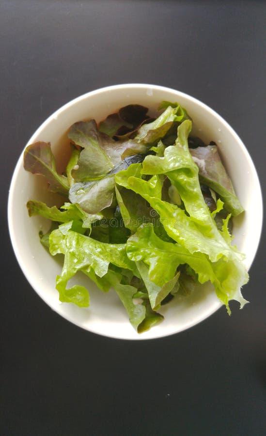 新鲜的蔬菜沙拉健康菜 库存图片