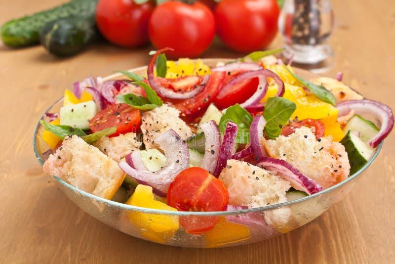 新鲜的蕃茄和面包Panzanella沙拉 免版税库存图片