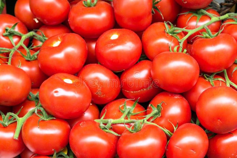 Download 新鲜的蕃茄待售 库存图片. 图片 包括有 手工制造, 特写镜头, 意大利语, 类似, 农夫, 新鲜, 市场 - 72360735