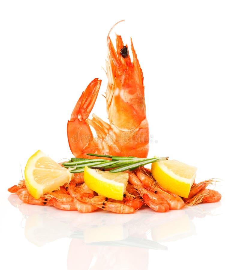 新鲜的虾 库存照片