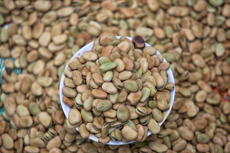 新鲜的蚕豆 免版税库存照片