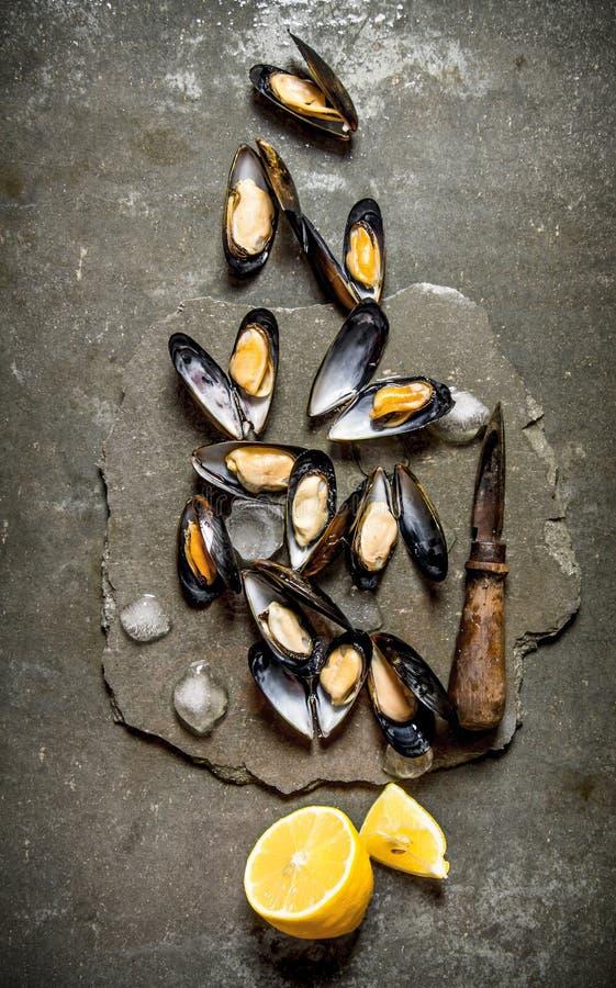 新鲜的蛤蜊用柠檬和冰在一个石立场 免版税库存照片