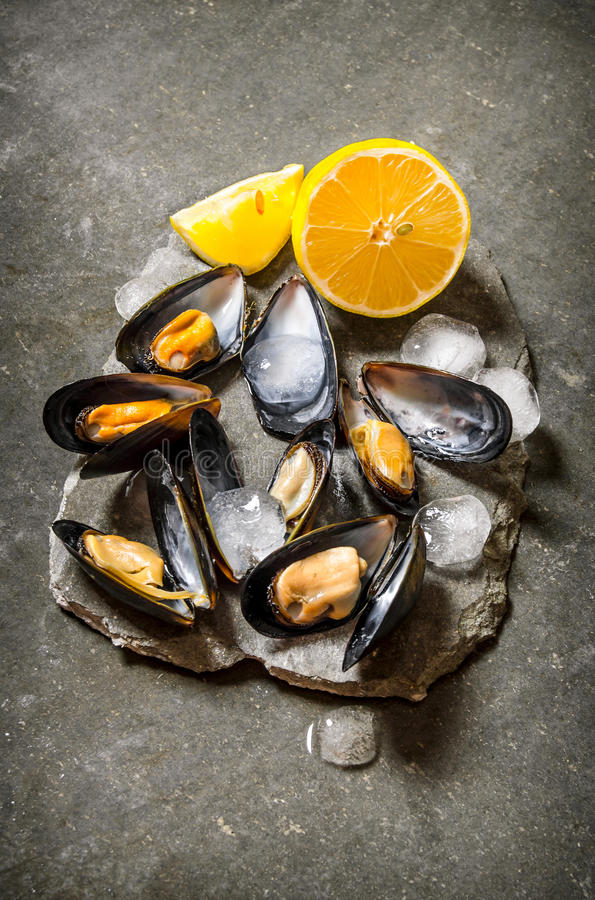 新鲜的蛤蜊用柠檬和冰在一个石立场 图库摄影